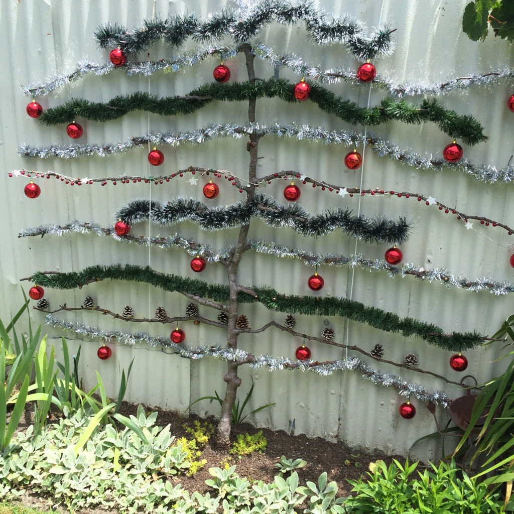 Eco Outdoors Christmas Tree
